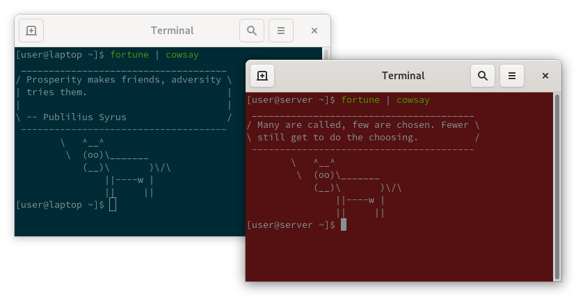 Screenshot of terminals with different background colors